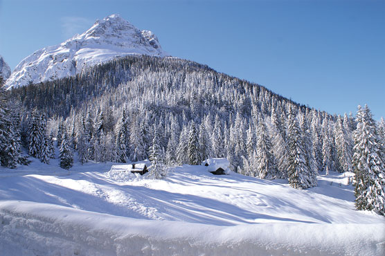 Lorenzago di Cadore (Bl), Passo della Mauria.